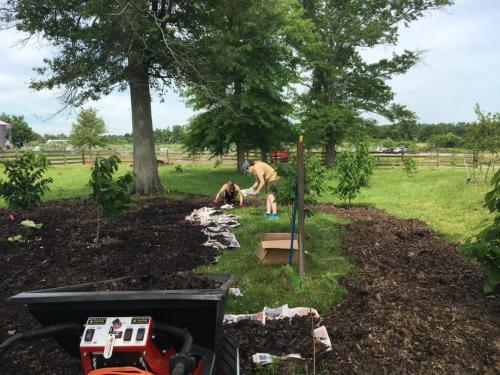 E-750 Electric Wheelbarrow Duke Farms Landscaping 3